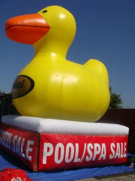 Promotional Duck